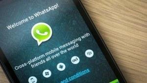 buscar trabajo por whatsapp