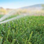 Sistema de riego para jardín barato y fácil de utilizar, dónde comprarlo, mejor precio, oferta